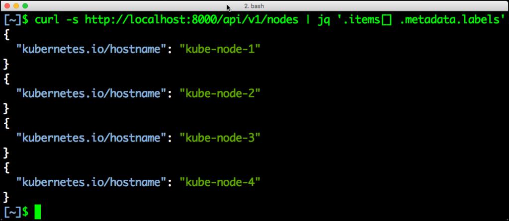 Kubernetes-curl-nodes