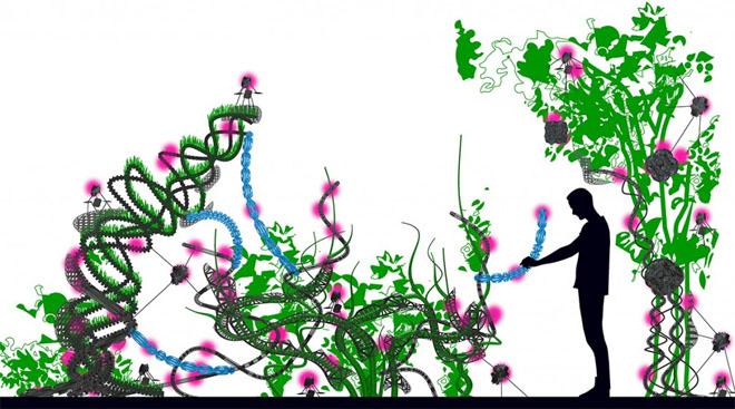 flora-robotica-2