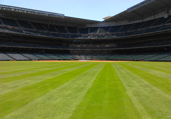 Minute Maid Park field view