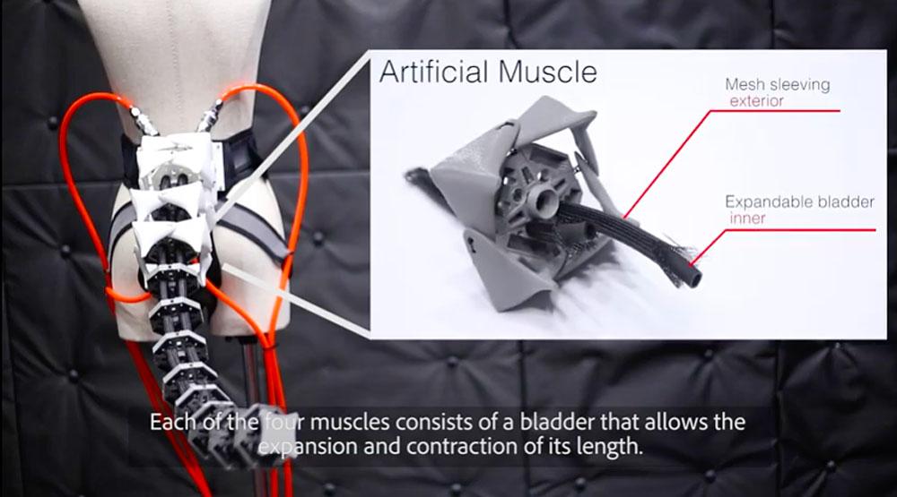 العضلات الصناعية في ذيل أرك الآلي