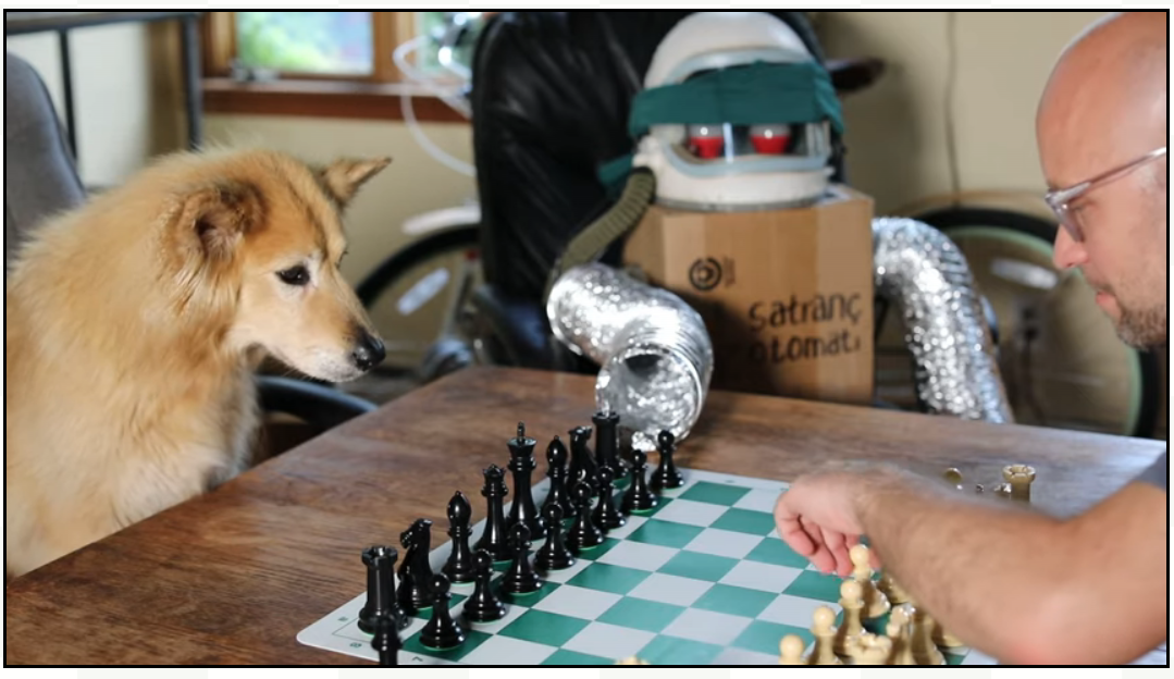 om Murphy VII plays chess against a dog and a robot