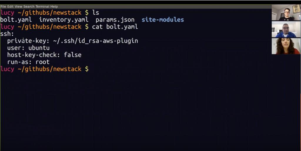 Screen shot from Bolt demo video