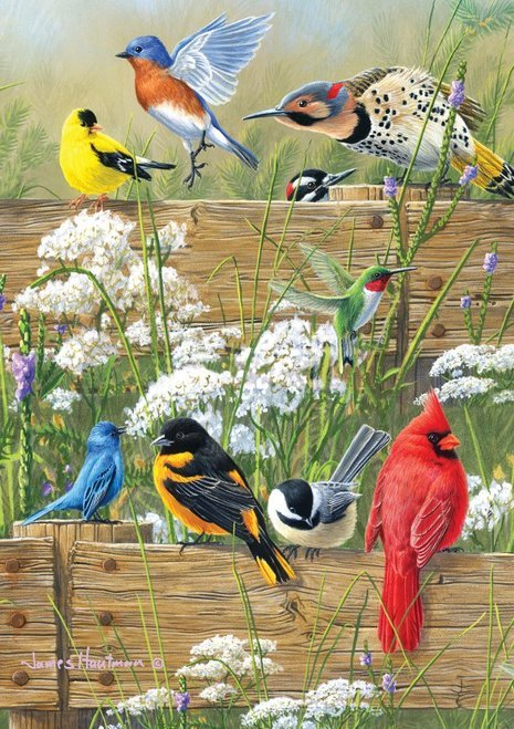 Songbirds puzzle from Buffalo Games